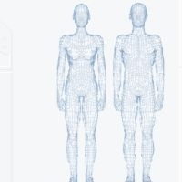 Science Interactive Body
