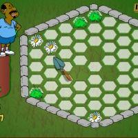 Hexagon Garden