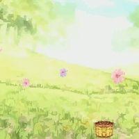 Złap kwiatki dla Sakury