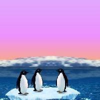 Turbocharged Penguins!
