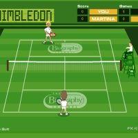 Wimbledon Heroes